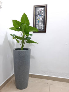 Decorative Synthetic Flower Plant pot