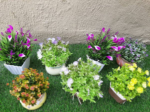 table top pots and flower plants