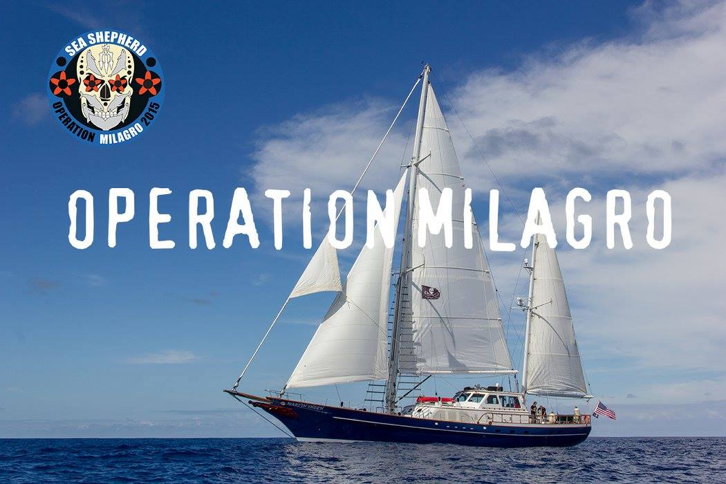 Operation Milagro - Sea Shepherd RV Martin Sheen