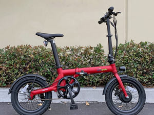 Qualisports - Nemo 250W 36V E-Bike BLACK RED WHITE 🚴‍♂️ - All Wheels Mobility