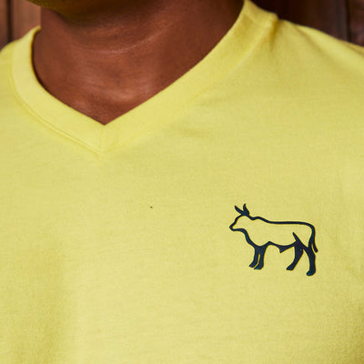 Two Tone Nguni V-Neck Pistachio Tee