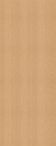 Beech Flush Door