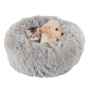 Pet Bed with Blanket