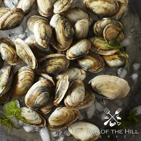 Little Neck Clams (50)