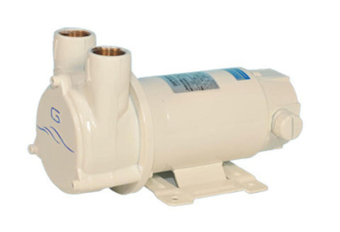 Gianneschi ACB 61 G Pump