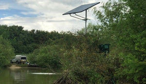 Green energy to help scale back fish deaths during dry weather