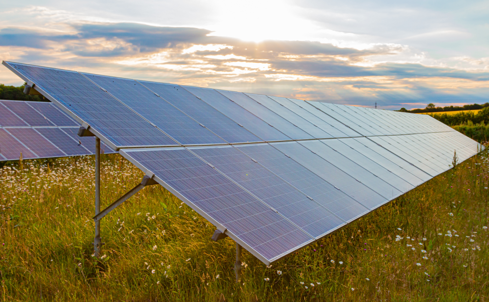 EDF continues solar push with 49.9MW site planned