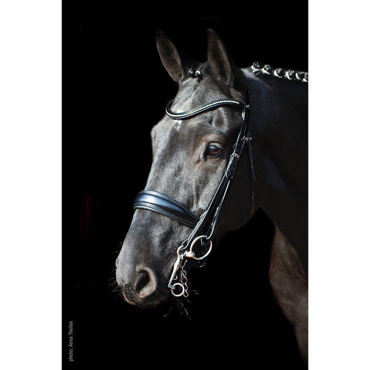 Schockemohle Milan Anatomical Double Bridle, Black/Silver