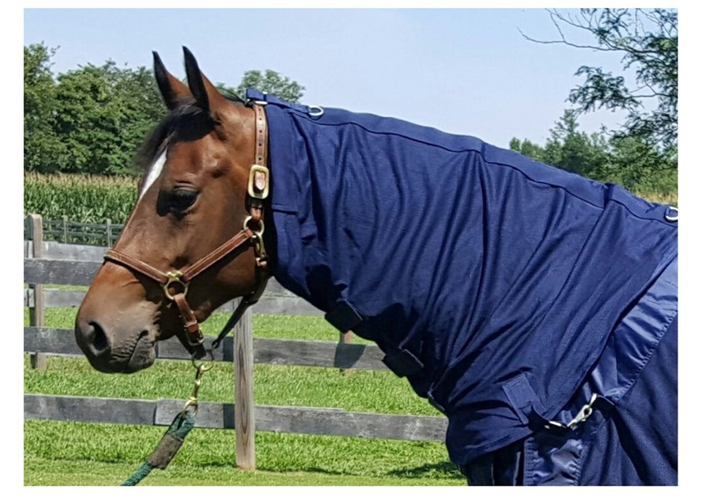Back On Track Therapeutic Horse Neck Cover Navy Dapper Horse