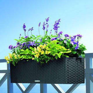 Lechuza Balconera Cottage Planter