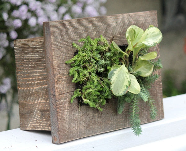 GroVert Mini Vertical Garden Frame Kits