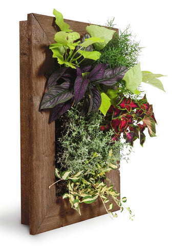 Single vertical garden frame