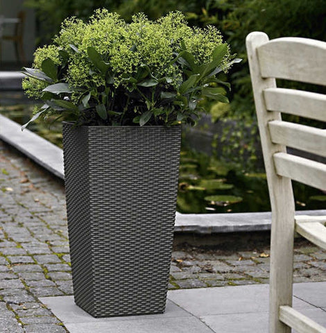 Cubico Cottage Planter