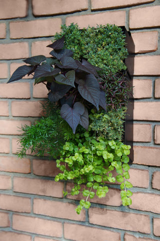 GroVert Vertical Garden Planter