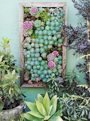 Grovert living wall planter with frame
