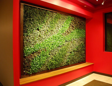 Copy of GroVert Vertical Garden Panels BG8