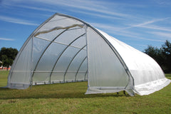 Greenhouse 40'x20' - Walk-in Nursery - Clear with Pointed Arch