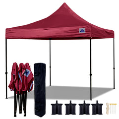 D Model 10'x10' - Pop Up Tent Canopy Shelter Shade with Weight Bags and Storage Bag