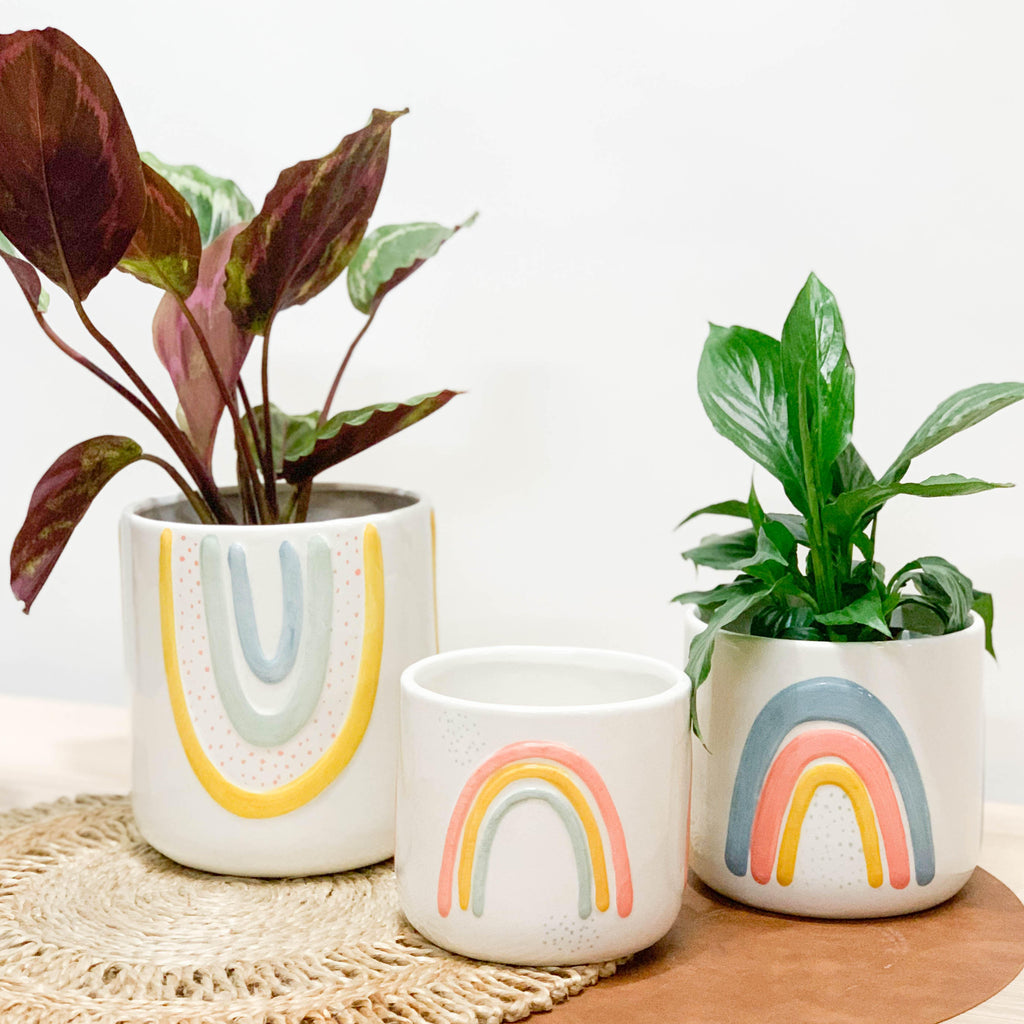 NEW QUIRKY PLANTERS!
