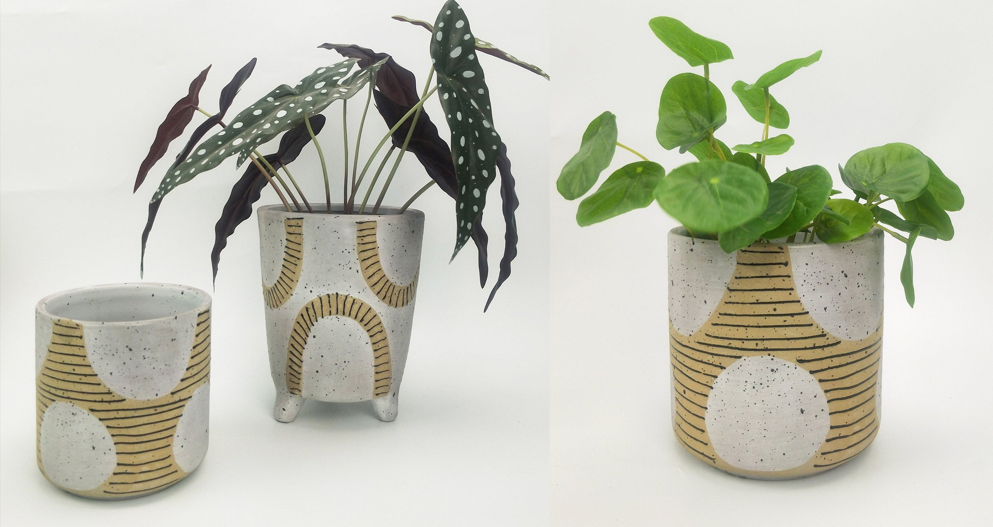 Cyrus planters by urban products