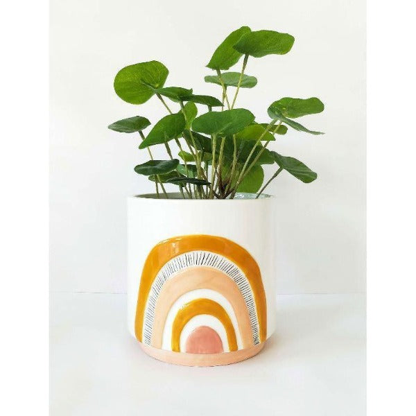 woodstock rainbow planter mustard and white
