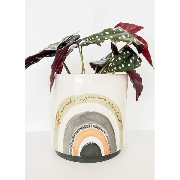 woodstock bloom planter large green and grey