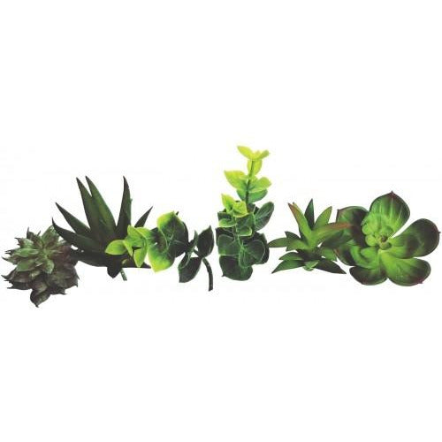 Succulents Artificial Green Small 7 Pack