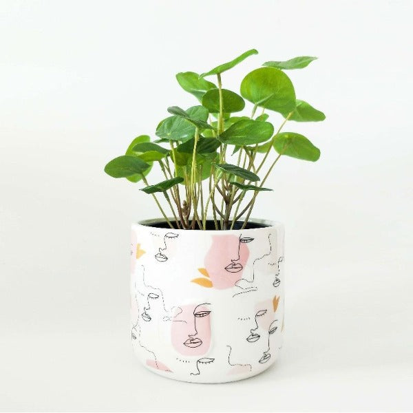 Linear Face Planter Pink Small 11cm