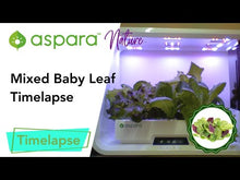 Load and play video in Gallery viewer, Mixed Baby Leaf