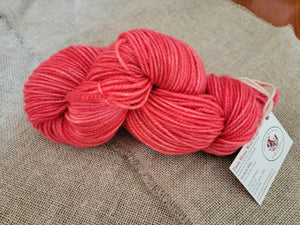 Hand Dyed Wool Yarn - Watermelon