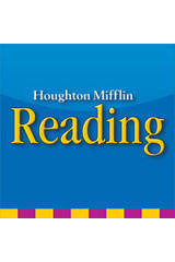 Houghton Mifflin Reading Weekly Skills Test BLMs and TAE Grade 4