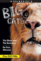 Steck-Vaughn BOLDPRINT Anthologies Individual Student Edition Orange Big Cats