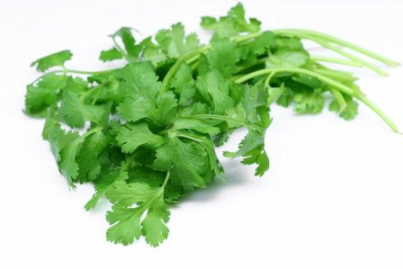 Organic Cilantro - Bunch