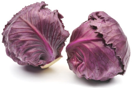 Organic Cabbage Red - Each