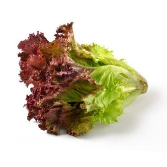 Organic Lettuce Red Leaf - Each