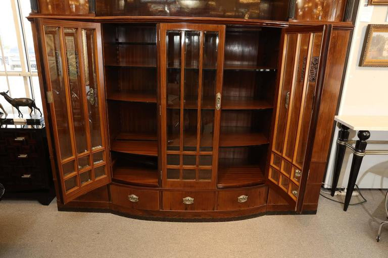 Hungarian Credenza/Bookcase in Palisander wood