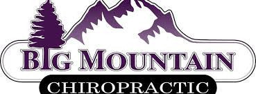 Big Mountain Chiropractic 6 Visit Package for Existing Clients / Value of $525