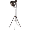 Metal Floor Lamp with Covered Cage Design Shade, Rustic Bronze