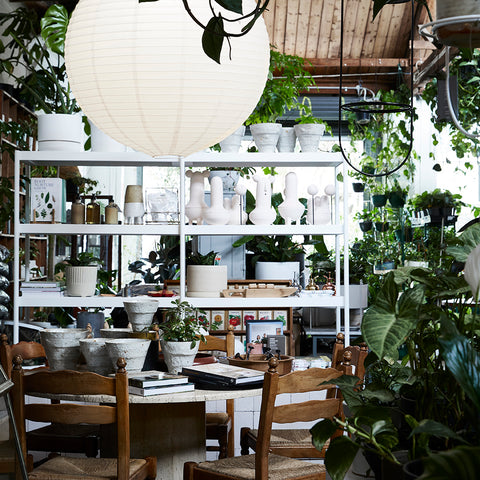 The Plant Society_Collingwood_Open
