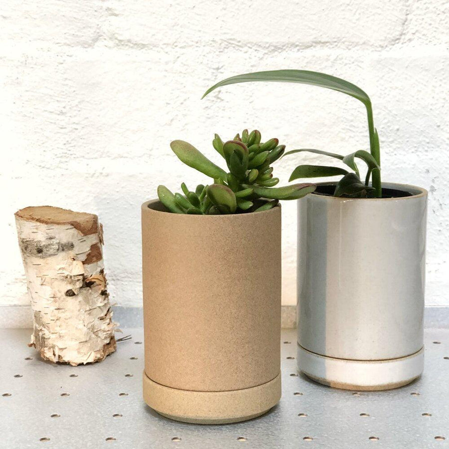 hasami planter small natural and white with plants