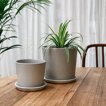 Botanical Family Pot in Light Grey by HAY