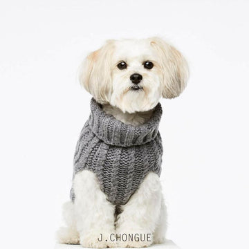 John B Dog Coat in Grey by The Painter's Wife