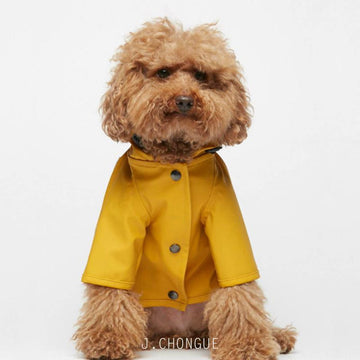 Sarah Dog Raincoat in Plain Spectra Yellow by The Painter's Wife