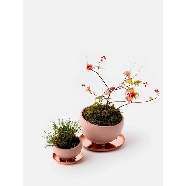 Marco Planter by Izawa Seito