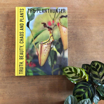 Truth, Beauty, Chaos and Plants By The Plant Hunter