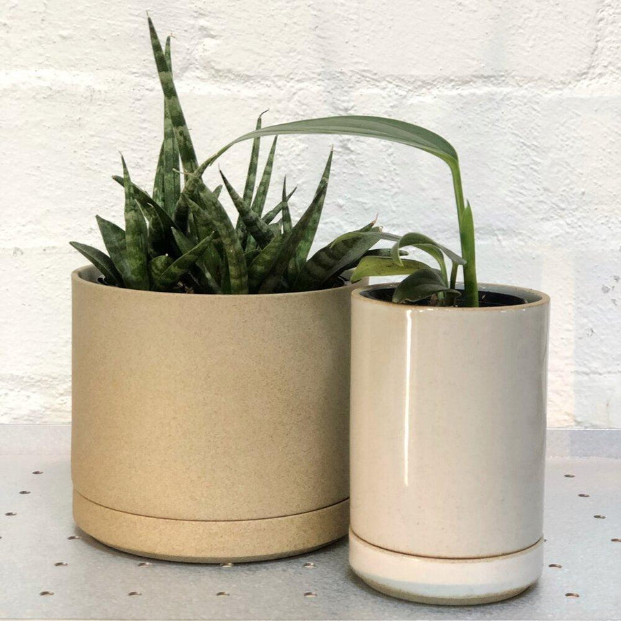 Hasami Porcelain Planter - Small