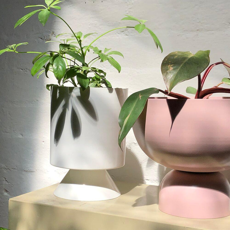 Large Goblet Planter by Lightly