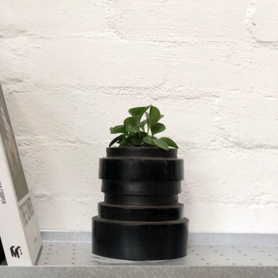 Chulucanas Vase black charcoal homewares design styling peperomia obtusifolia