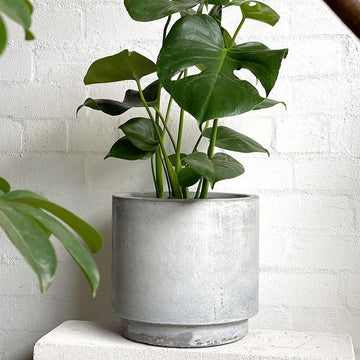 High Line Planter in Cement Grey