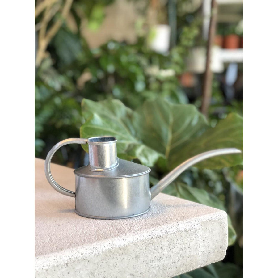 Galvanised Watering Can by Haws